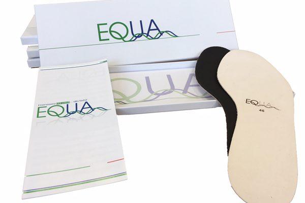 equa1